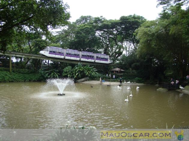 Jurong Bird Park6