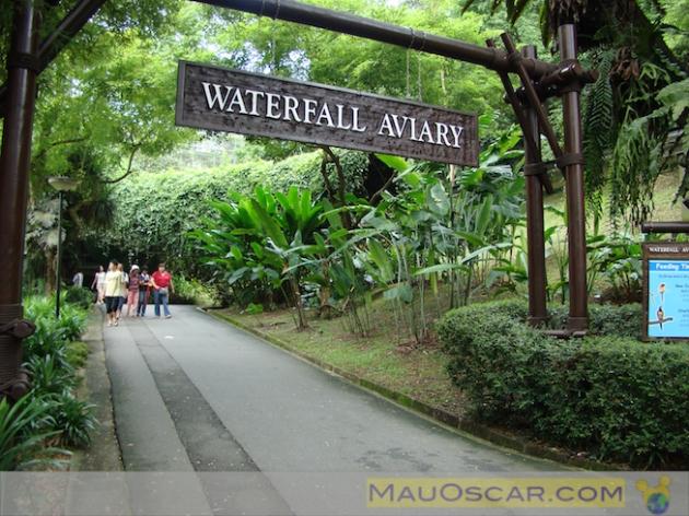 Jurong Bird Park7