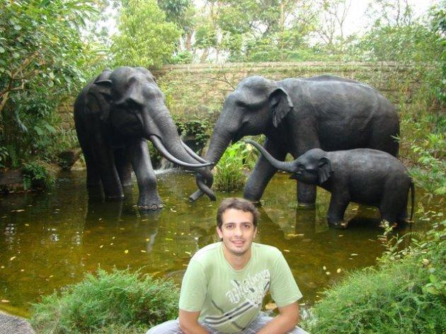 Zoo Cingapura