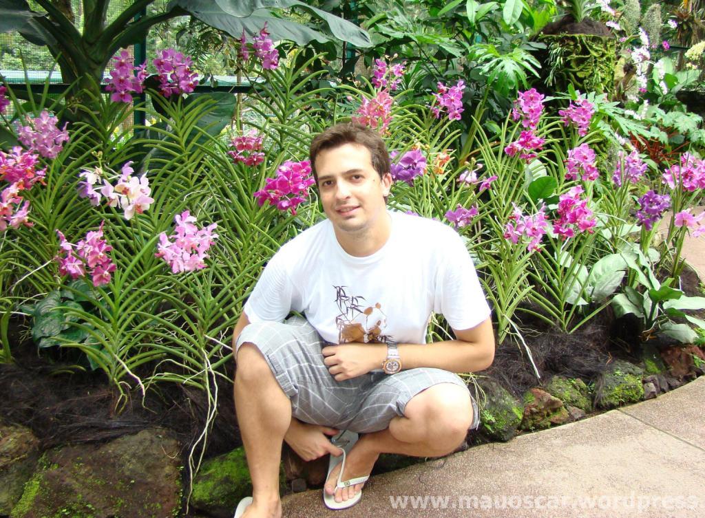 Jardim Botanico Cingapura (54)
