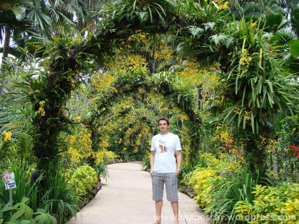 Jardim Botanico Cingapura (67)