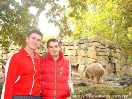 Zoo Berlin - Mauoscar e Knut