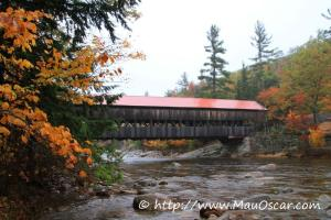 New Hampshire  (11)