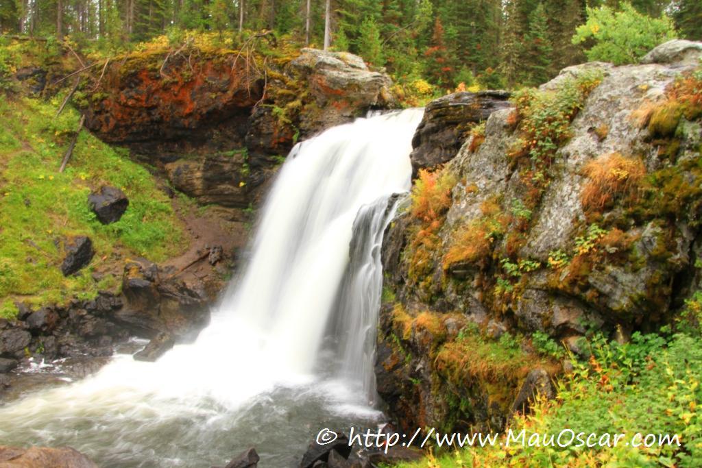 Guia para o Yellowstone National Park MauOscar Blog de  : moose falls em yellowtone from mauoscar.com size 1024 x 683 jpeg 135kB