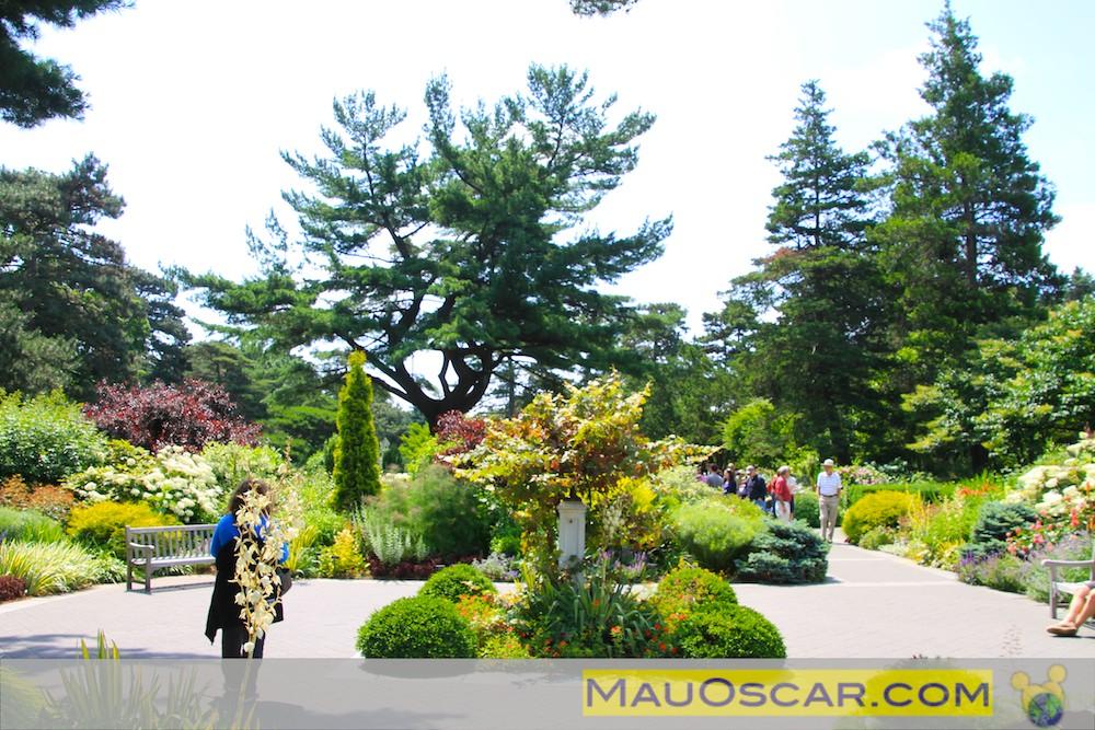 flores jardim perenes : flores jardim perenes:Jardim das Plantas Perenes no Jardim Botanico de Nova York