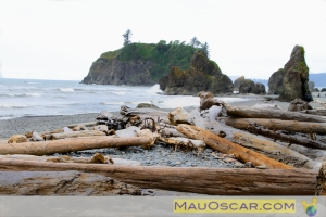 Litoral do Olympic National Park em Washington