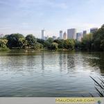 Nova York 28 Central Park