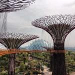 Gardens by the Bay - A Mais nova Atração de Cingapura