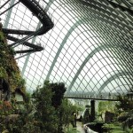 Gardens by the Bay - Conservatoria