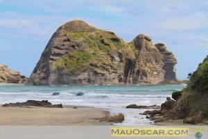 Piha Beach Taitomo Island