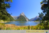 Milford Sound - Fiordlands National Park